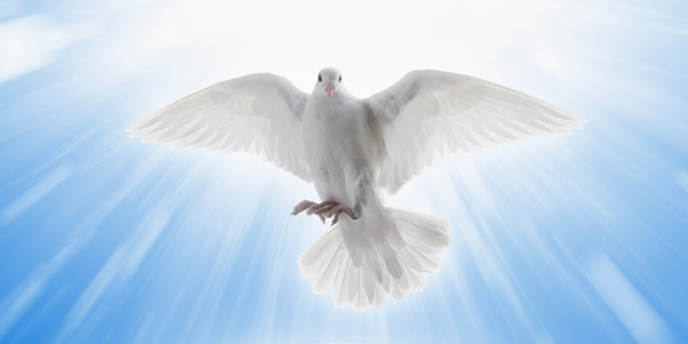 web3-holy-spirit-dove-blue-sky-clouds-trinity-shutterstock.jpg