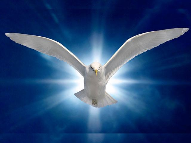 1-holy-spirit-dove_SI.jpg