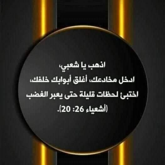 90743352_911090556015845_4942596077304938496_n.jpg